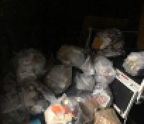 千葉船橋ゴミ屋敷清掃 お引越荷物運搬
